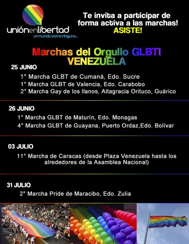 Marchas del Orgullo GLBTI 2011